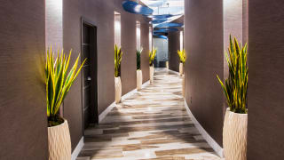 Entry hallway to treatment rooms in Spa at Grand Sierra Resort